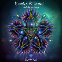collaborations grouch hedflux