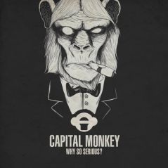 Why so Serious - Capital Monkey