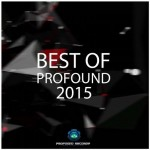 best of profound 2015 - pragmatix