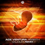 ace ventura rebirth gaudium remix
