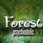 forest psychedelic vi